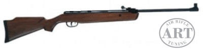 ART tuned xs19 air rifle