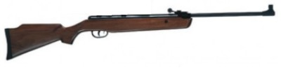 xs19 air rifle