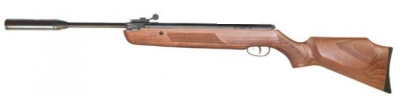 xs19 Custom carbine air rifle